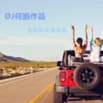 DJ何鹏2019劲爆舞曲串烧