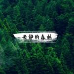 安静的森林 - 睡前的冥想和瑜伽音乐为了深度睡眠
