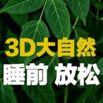 雨声催眠丨3D大自然 无损享受