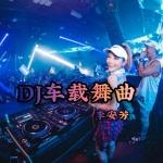 DJ车载舞曲 (加快版)