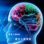 α脑波音乐 放松大脑提高记忆力