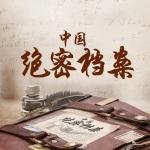 中国绝密档案 机密 大案 悬案