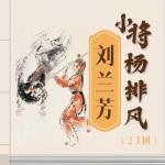 刘兰芳:小将杨排风(20回)