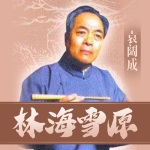 袁阔成:林海雪原(45回)