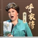 刘兰芳:呼家将(93回)