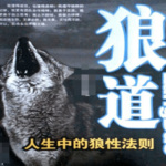 狼道全集:卓越的狼性法则