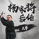 王军:杨家将后传(60回)