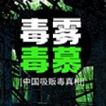 毒雾▪毒慕:中国吸贩毒真相
