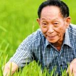 袁隆平先生