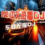 DJ热门车载嗨曲