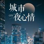 城市夜心情