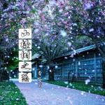 山楂树之恋_ (DJ版)