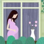 宝宝爱听的胎教音乐