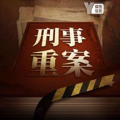 新中国大案总汇